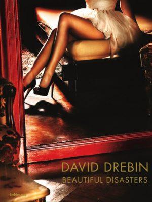 David Drebin, Beautiful Disasters
