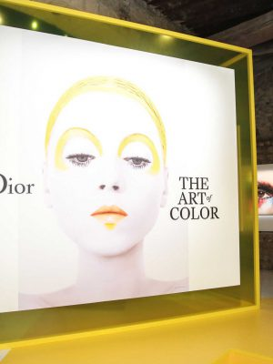 Dior The Art of Color